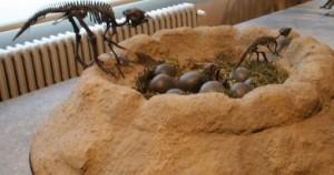 uova dinosauro bruxelles bambini
