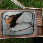 La televisione serve ai bambini bilingui?